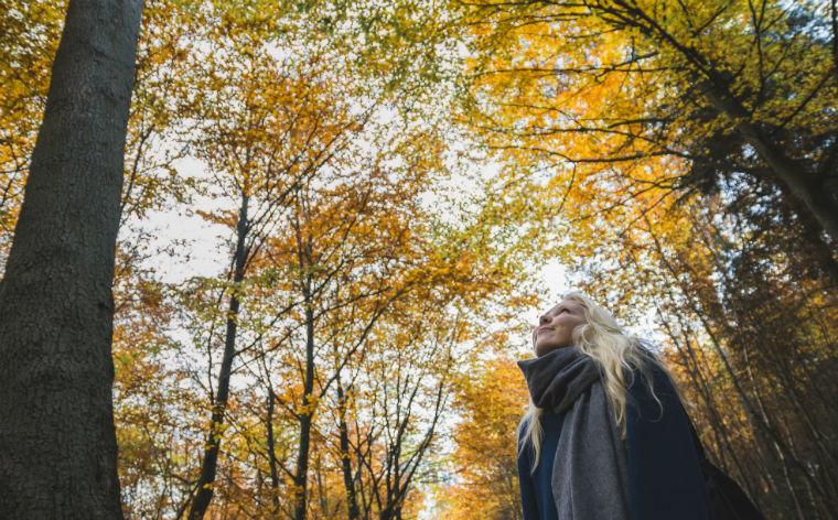 10 naturskønne steder hvor du kan nyde efteråret i Danmark