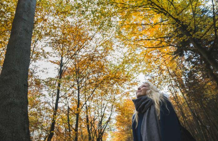silkeborg skovene i efteråret