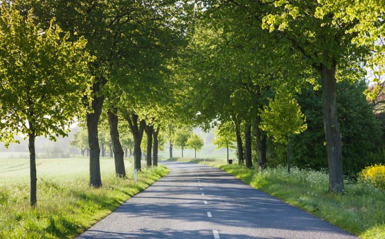 Roadtrip på Margueritruten: Se det smukkeste af Danmark