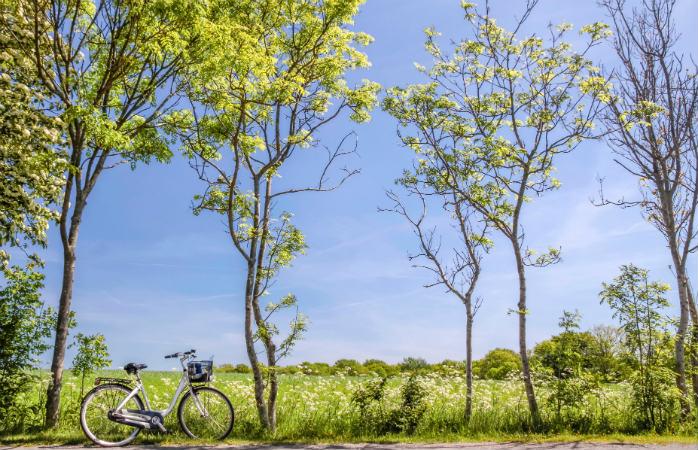 Cykelruter på Bornholm