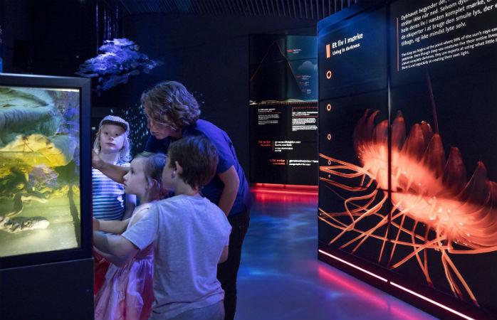 Den Blå Planet - Oplevelser for børn i København