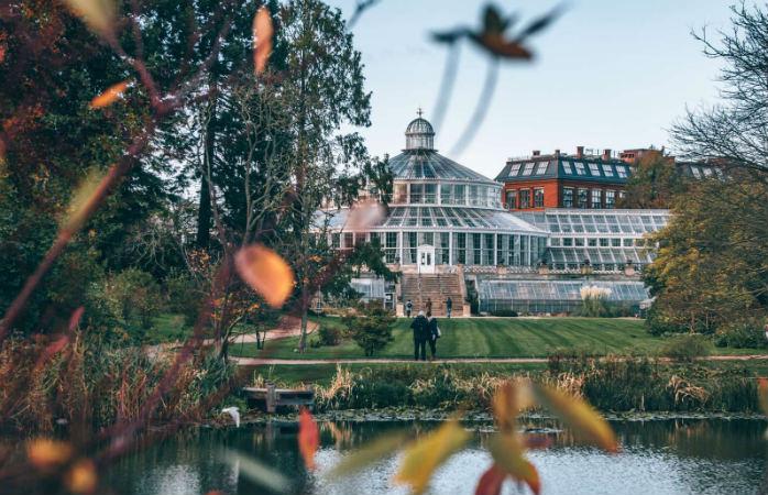 Københavns Botaniske Have i efteråret