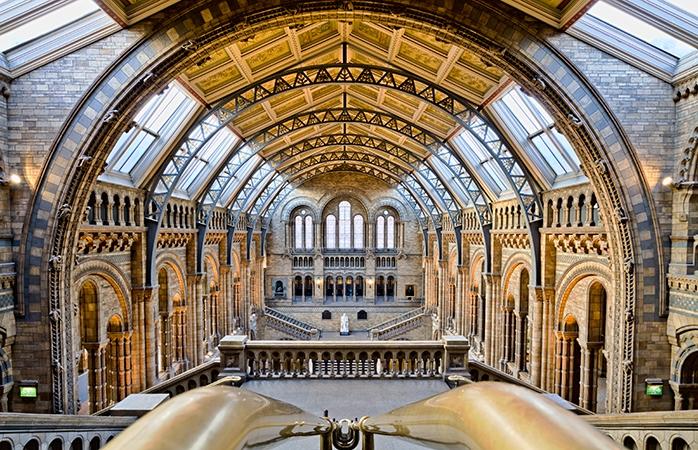 natural history museum i london