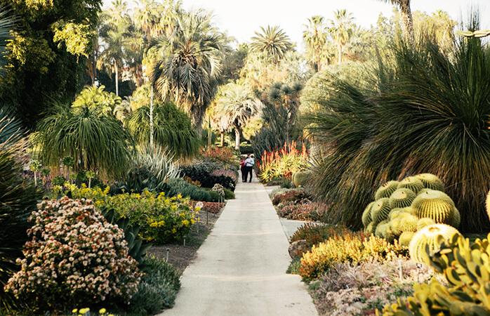 En dejlig gåtur gennem en af Huntington Librarys mange haver.