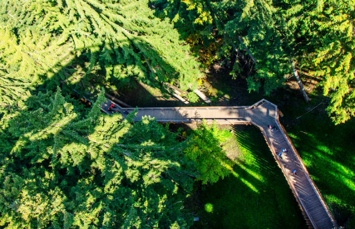 Hainich Nationalpark