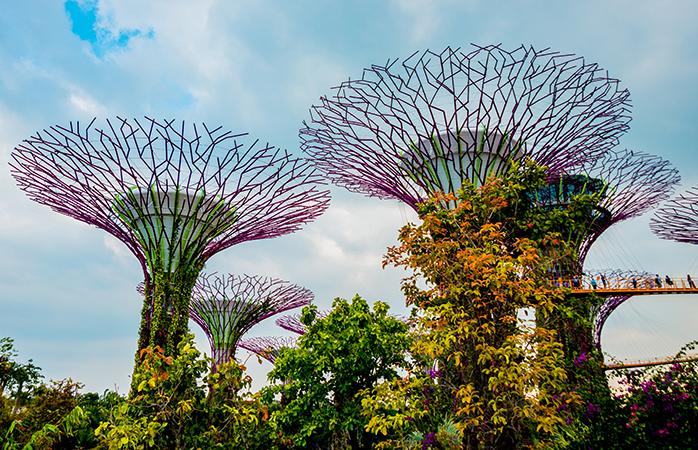 Smukke, imponerende og bæredygtige: Singapores byhaver